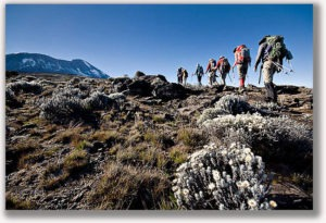 Kilimanjaro climb Preparation
