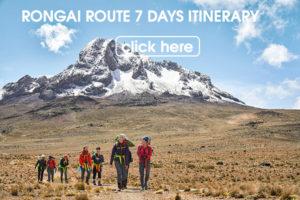 Rongai route 7 days climb
