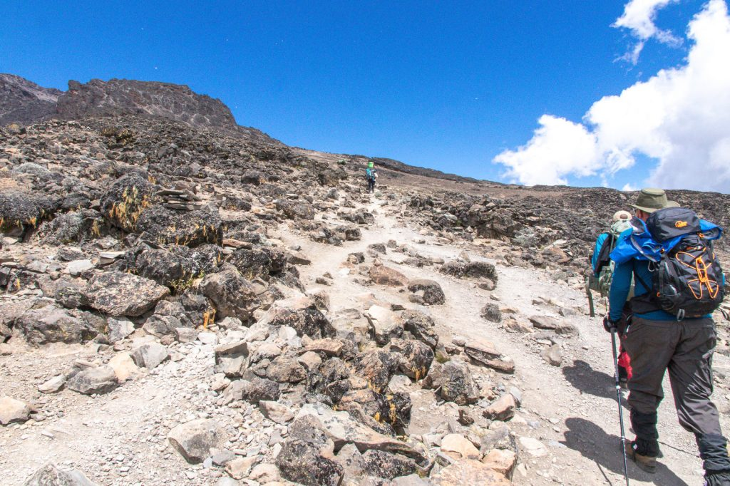 Kilimanjaro-July